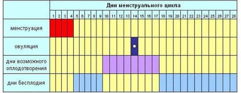 На сколько надежен календарный метод предохранения от беременности ...