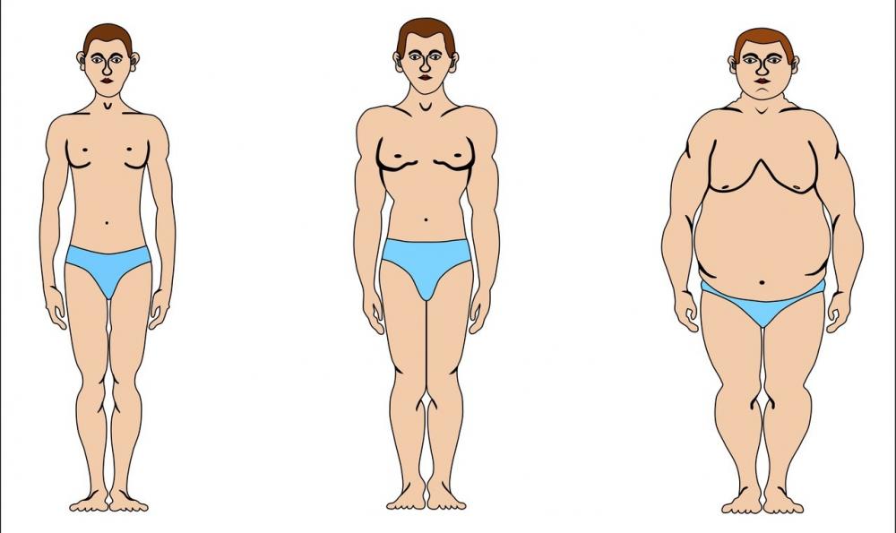 норма веса у женщин по возрасту