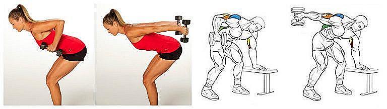 упражнения с гантелями в домашних условиях (главный ключ)