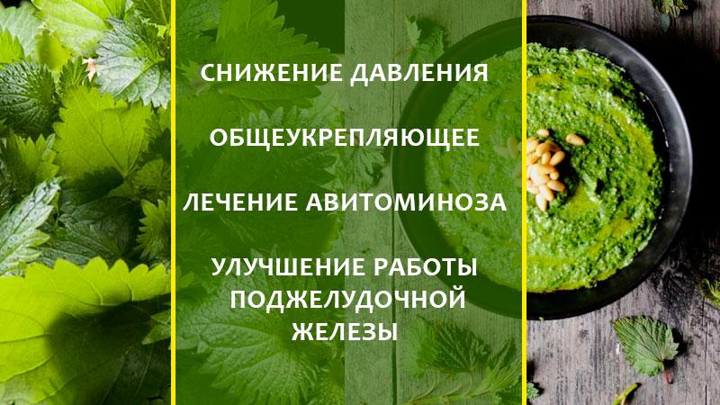 листья крапивы лечебные свойства и противопоказания