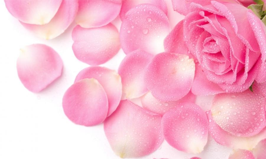 Лосьон из лепестков розы для лица от шелушения
