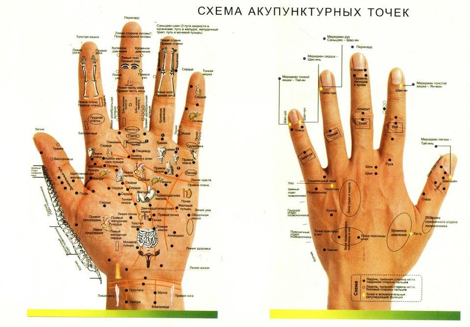 Точечный массаж: активные акупунктурные точки китайской медицины на ...