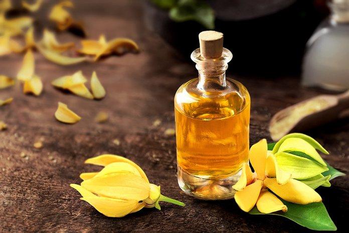 Эфирное масло иланг-иланг: полезные свойства и применение